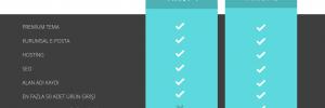 WordPress kurumsal website paketlerinde %30 indirim