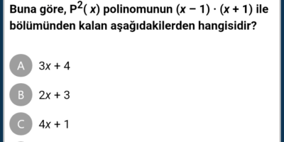 Polinomlar
