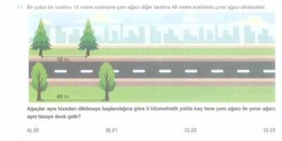 Ağaçlar aynı hizadan dikilmeye başlandığına göre 3 kilometrelik yolda kaç tane çam ağacı ile çınar ağacı aynı hizaya denk gelir