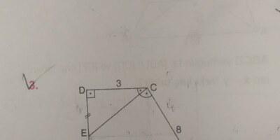 Matematik yamuk