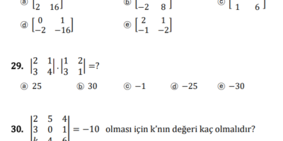 matematik ödevi